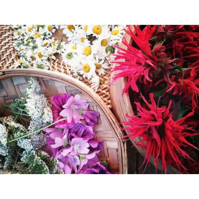 Tisane#Floral